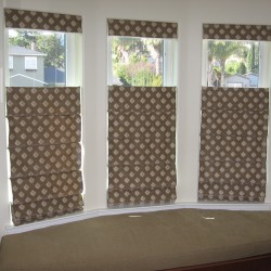Bottom Up/Top Down Roman Shades